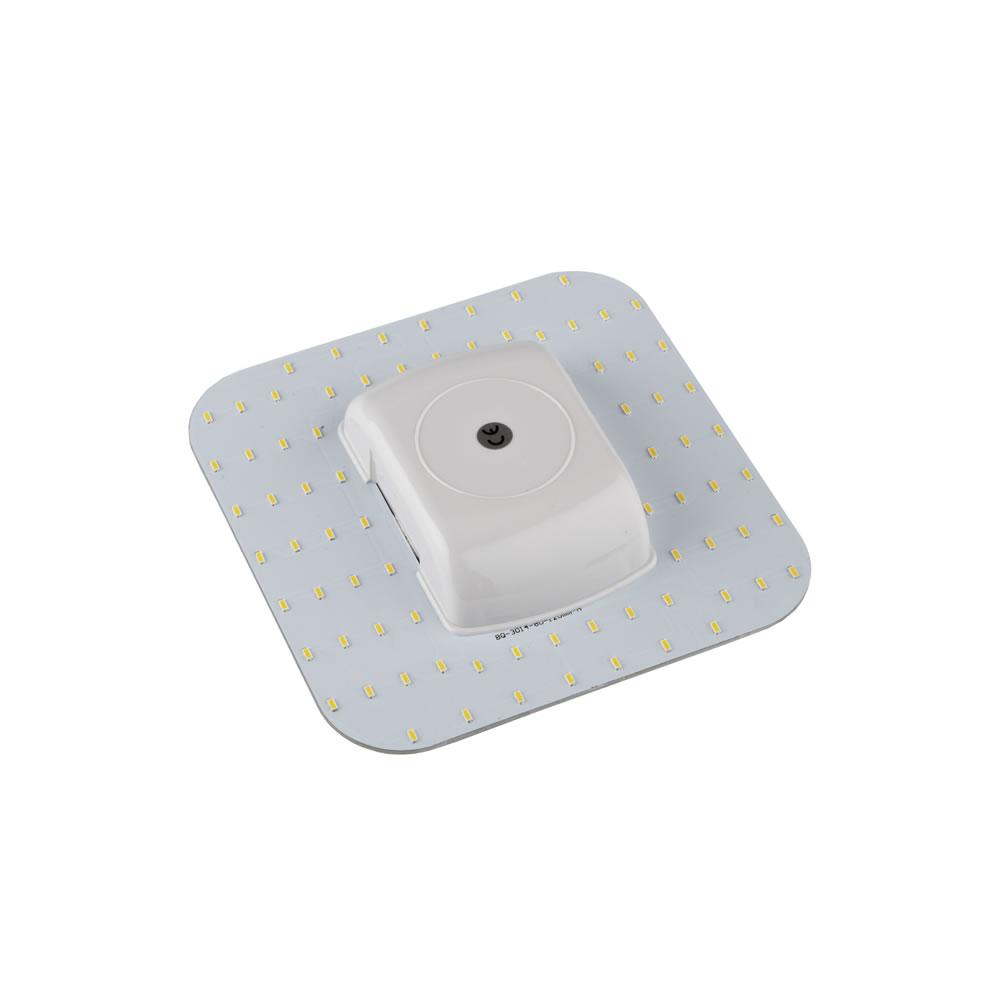 Biard 8W 4 Pin 2D LED Licht