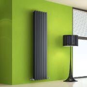Design Heizkörper Vertikal Doppellagig Anthrazit 1600mm x 420mm 1475W - Vital