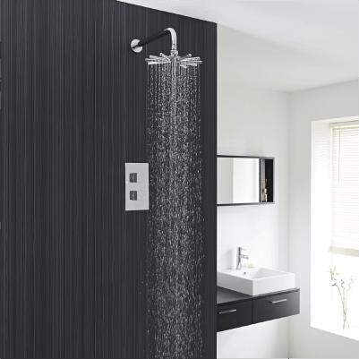 Duschsysteme - 1 Auslauf